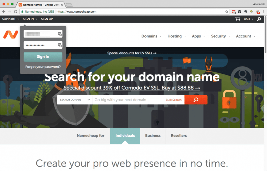 wordpress website name server 1